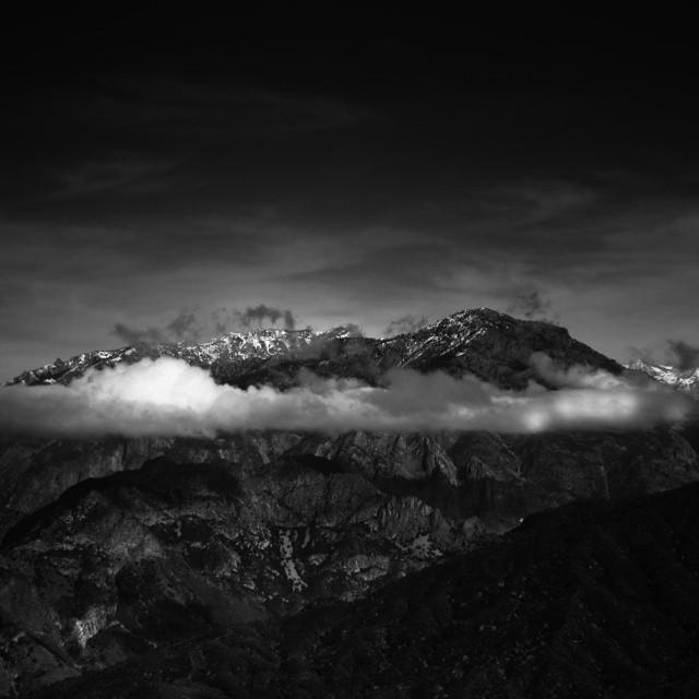 blackandwhite-blackandwhiteisworththefight-sequoia-nature-landscape-bw-photography_16181441352_o